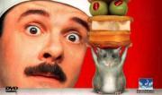 Săn chuột | Mouse Hunt | 1997